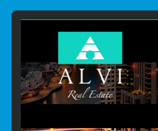 Alvi Real Estate