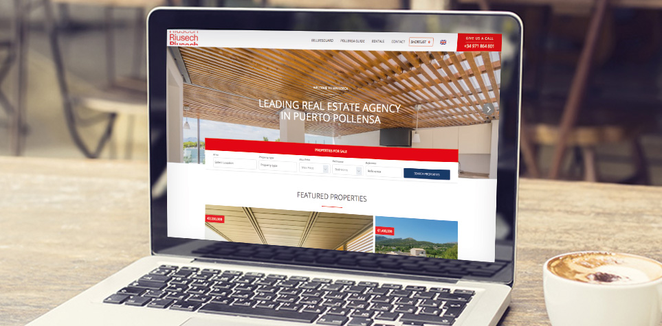 Riusech estate agency website design